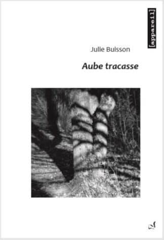 couverture Aube tracasse de julie Buisson
